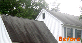 House, Roof Cleaning in Tewksbury, MA